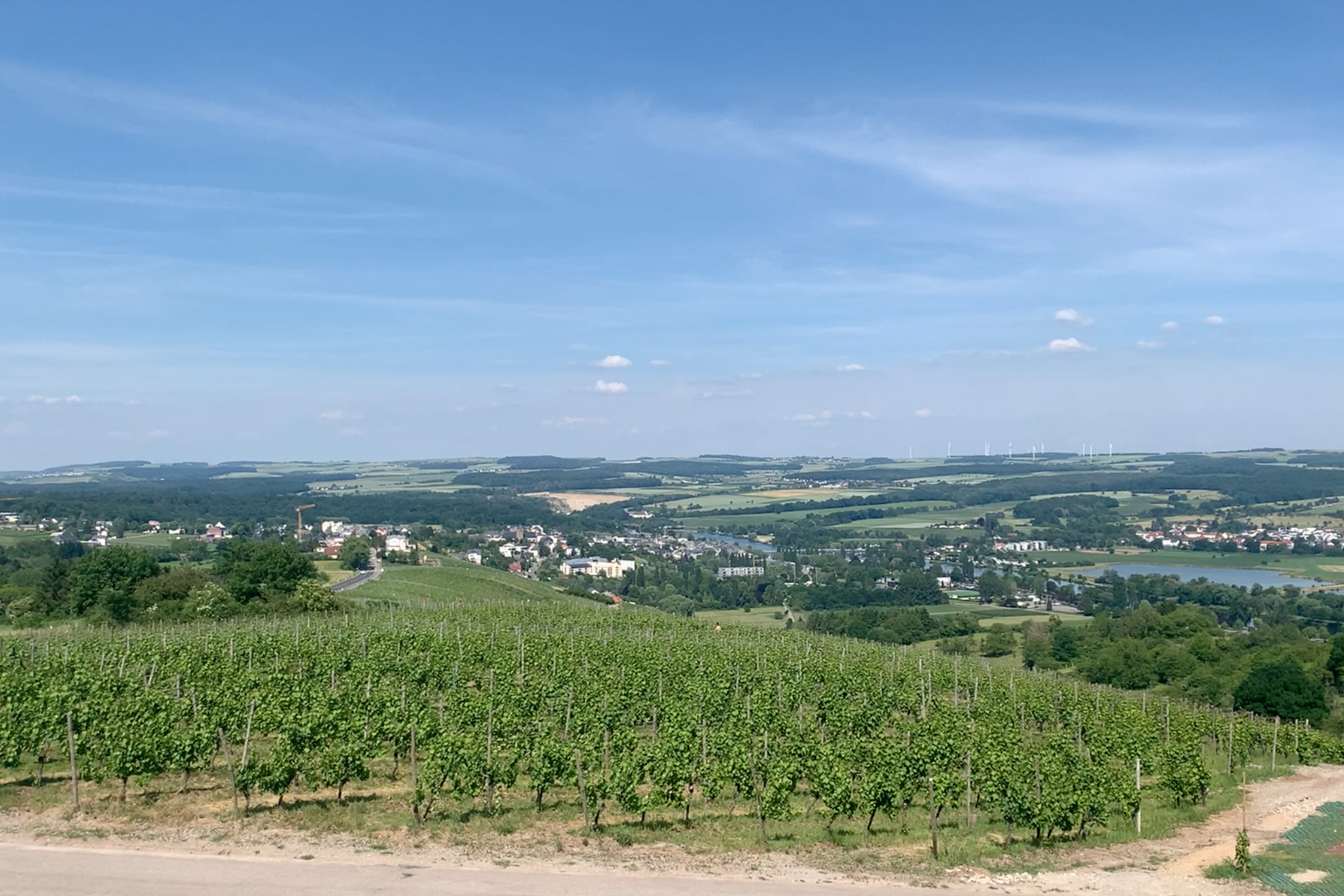 Luxembourg Wine – Crémant, Pinot Noir & 2000 Year History