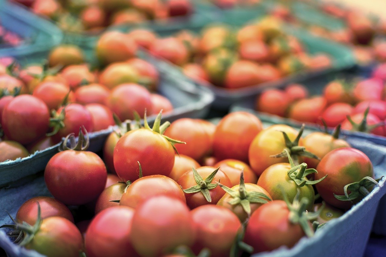 Dietary Restrictions in Luxembourg: Allergies, Celiacs, & Vegetarianism